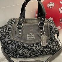 Euc Coach Ocelot Leopard Gray Patent Satchel Handbag Purse Black Silver F15530 Photo