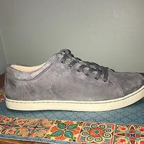 Euc Ugg Australia Tomi Women's Round Toe Suede Pewter Sneakers Size 12 Msrp 100 Photo
