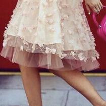 Eva Franco Tulle Blush Pink Skirt Anthropologie Nwt 2p Fluttered Fete Photo