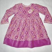 Excellent Condition Beautiful Baby Lulu Dress Size 4t Photo
