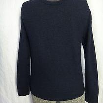 Express 100% Merino Wool Sweater v Neck No Tag Small Photo