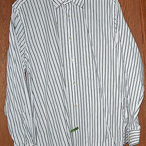 Express 1mx Modern Fit White Black Striped Dress Shirt L 16-16 1/2 Cotton Photo