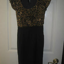 Express Animal Print Dress 2 Black Photo