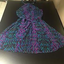 Express Animal Print Multicolored Dress Photo