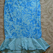 Express Beautiful Blue Floral Design Cotton Lined Dress Skirt 32