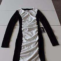 Express Black and White Dress Photo