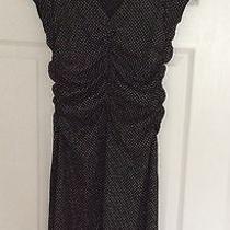 Express Black Polka Dot Dress Size 6 Knee Length Photo