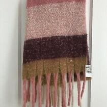 Express Blanket Scarf Pink Gold Brand New W Tags 70 Inch X 20 Inch Photo