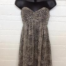 Express Design Studio. Dress. Size 4 Strapless Photo