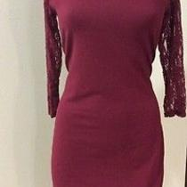 Express Dress Size Large L Burgundy Red Lace Photo