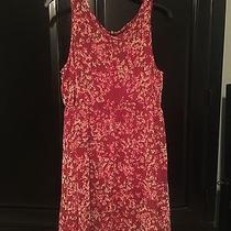 Express Dress Size Medium Photo