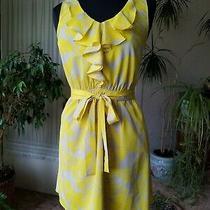 Express Dress Small Photo
