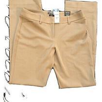 Express Editor Tan Pants Size 6 Nwt Bootcut Photo