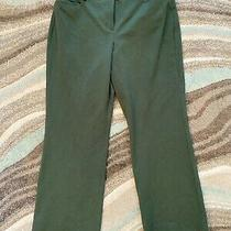 Express Editor Wide Leg Green Career Casual Mid Rise Stretch Pants 8 Short Photo