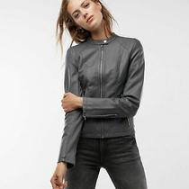 Express Faux Minus Vegan Leather Moto Jacket Coat Xsmall Xs Nwt Grey Gray Nwt Photo
