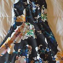 Express Fit and Flare Floral Dress 4 Nwot Photo