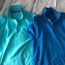 Express for Men Polo 2 Shirts Men  Photo