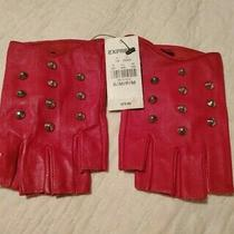 Express Gloves Fingerless Size S/p Color Red With Studs. Photo