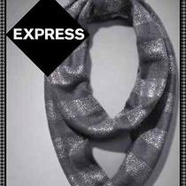 Express Gray/silver Striped Infinity Scarf  Photo
