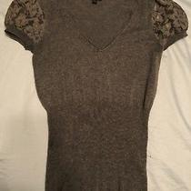 Express Gray Top With v-Neck and Capped Lace Sleeves Nwot Photo