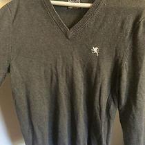 Express Grey v-Neck Sweater Photo