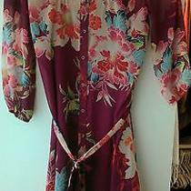 Express h&m Forever 21 Zara Dress Photo
