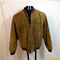 Express Heavy Suede Leather Jacket Mens Size M Medium Khaki Zippered Insulated Photo