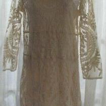 Express Ivory Stretch Crochet Lace W Slip Long Slve Scoop Neck Short Dress Sz S Photo