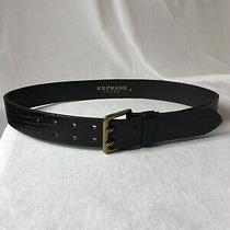 Express Jeans Brown Leather Patterned Belt Size M (39.5in) Brass Buckle Photo