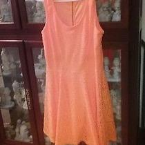 Express Lace Dress Bright Orange. Size Large Photo