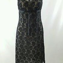 Express Lace Dress Size 7/8 Photo