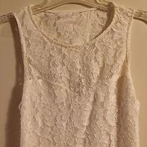Express Lace Dress Small Photo