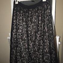 Express Lace Skirt (Brand New) Photo