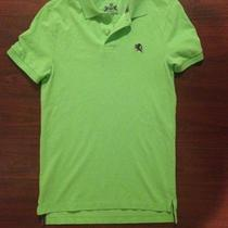 Express Lime Green Polo Shirt Sz Xs Photo