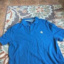 Express Men Polo Shirt  Photo