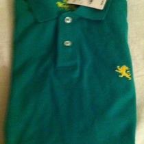 Express Men's Green Polo Size L Photo