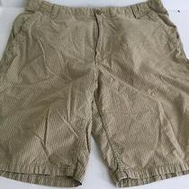 Express Mens Khaki Shorts Size 36 Photo