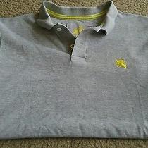 Express Mens Polo Shirt Size Medium Photo