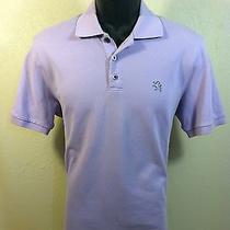 Express Mens S/s 100% Cotton Solid Lavender Polo Shirt Size S Euc Photo