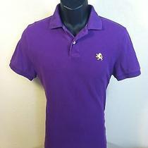 Express Mens S/s 100% Cotton Solid Purple Polo Shirt Size S Euc Photo