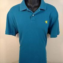 Express Mens S/s 100% Cotton Solid Teal Polo Shirt Size 2xl Euc Photo