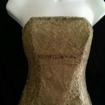 Express Metallic Lace Bustier Corset Brown Size Xs Photo