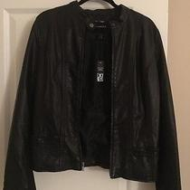Express (Minus the Leather) Black Jacket Size L Photo