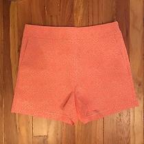 Express Neon Pink Leopard Print Shorts Nwt Size 10 Photo