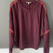 Express One Eleven Maroon Stripe Cropped Stretch Sweatshirt Medium M Photo