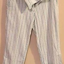Express Pants Womens Size 6 Photo