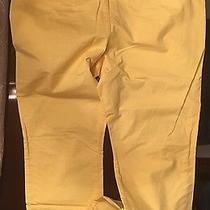 Express Photographer Slim Fit Straight Leg Pants Photo