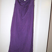 Express Purple Dress Photo