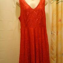 Express Red Dress Juniors Size12 62% Nylon 38% Viscose Sleeveless v Front &back Photo
