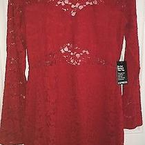 Express Red Lace Dress Photo